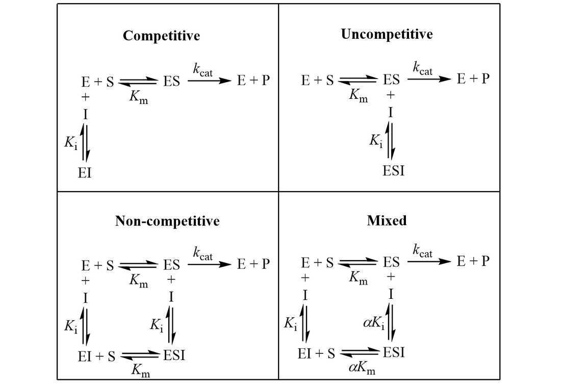 Kinetic schemes for enzyme inhibition: competitive, uncompetitive, non-compeptitive, and mixed