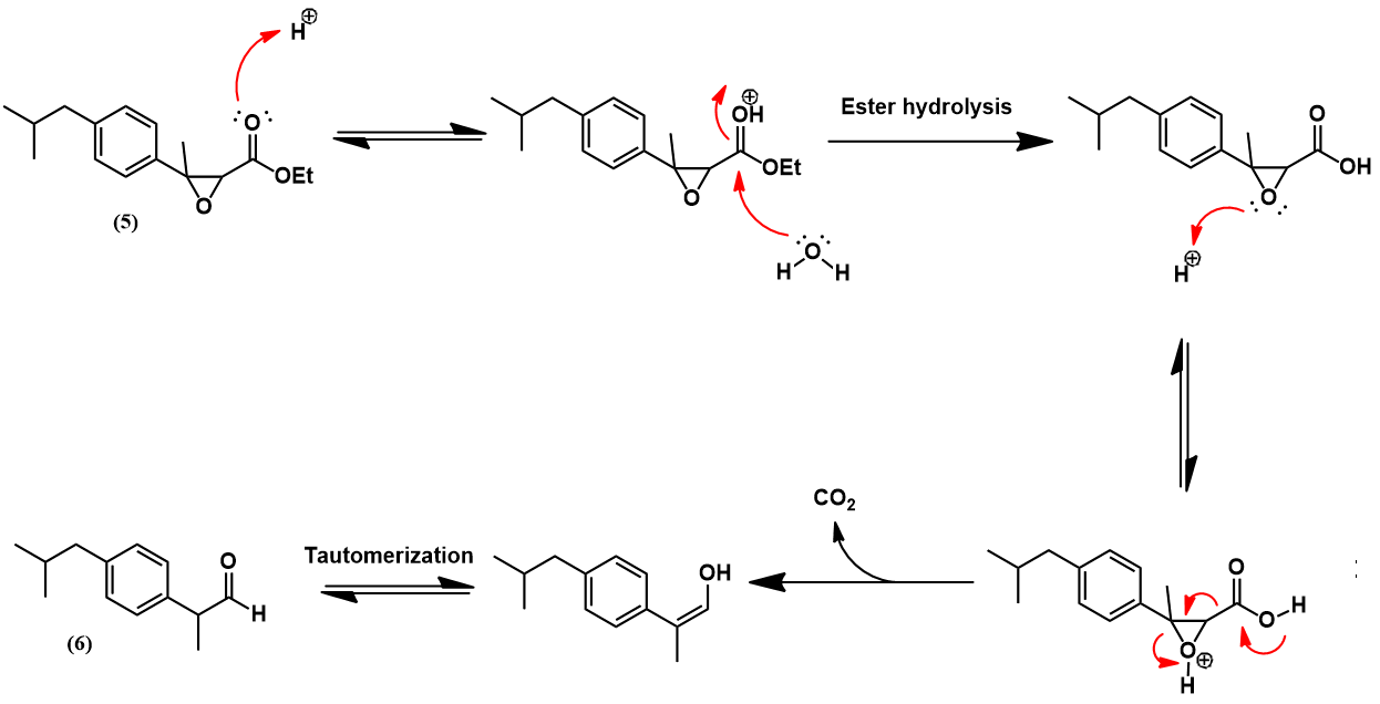 α,β-epoxy ester hydrolysis and decarboxylation mechanism